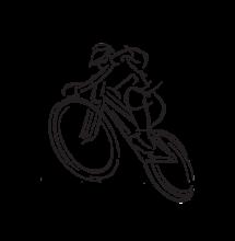 Pedelec hajtású országúti kerékpár