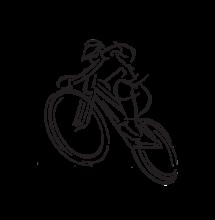 Pedelec hajtású FAT kerékpár
